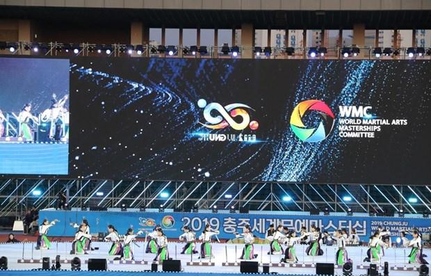 越南参加2019年忠州武艺大赛武术比赛 hinh anh 1