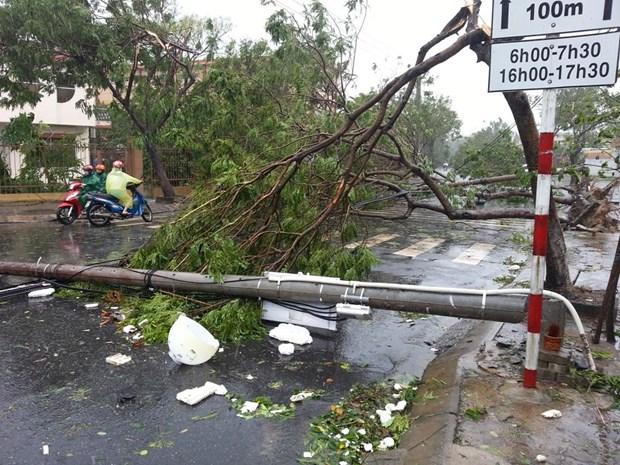 第四号台风及其环流袭击越南造成7人伤亡 全国各地遭受严重损失 hinh anh 1