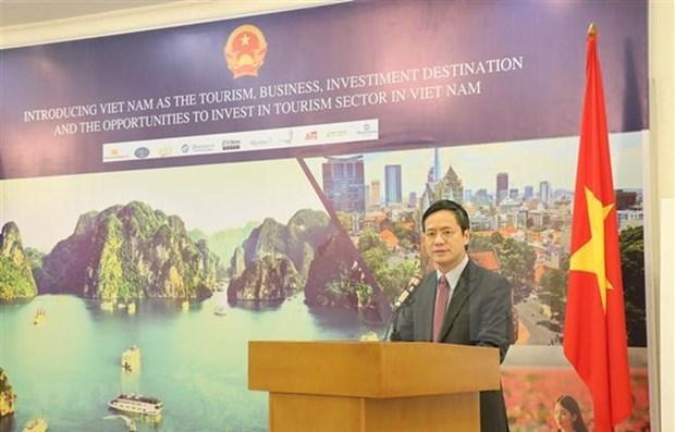 越南—印尼游客和投资者的目的地 hinh anh 1