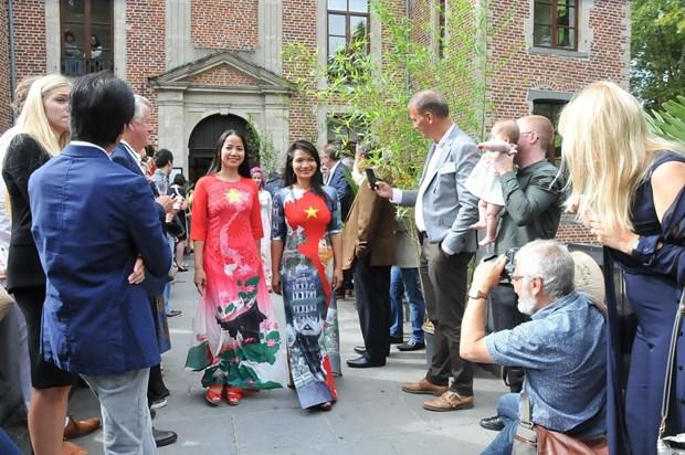 比利时越南日活动:推介越南形象的良机 hinh anh 1