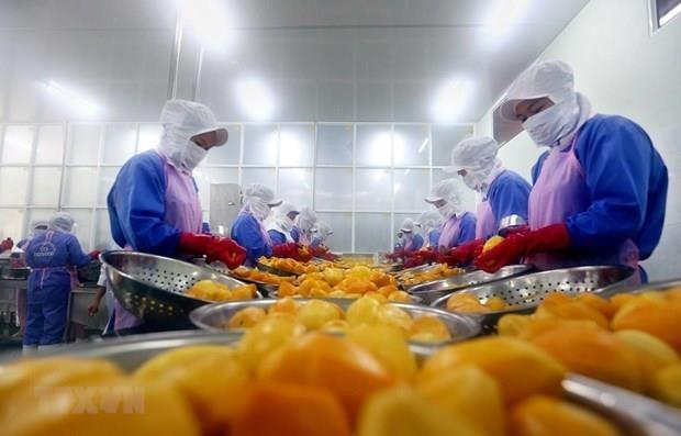 今年前8月全国贸易顺差为34亿美元 hinh anh 1