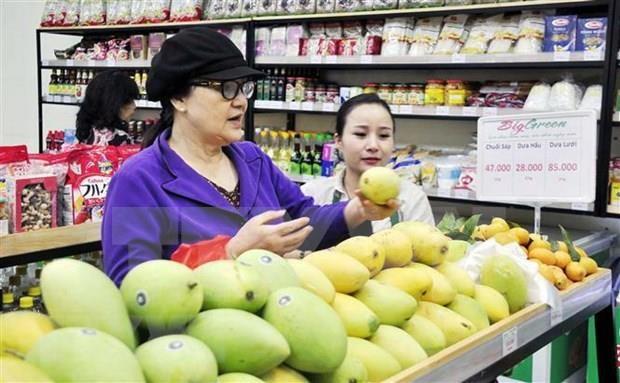 越韩两国分享分销行业中的相关经验 hinh anh 1