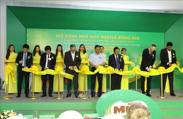 雀巢(越南)扩大在兴安省的生产范围 hinh anh 1