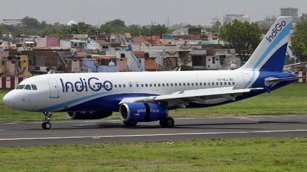印度靛蓝航空即将开通飞往越南的第二条航线 hinh anh 1
