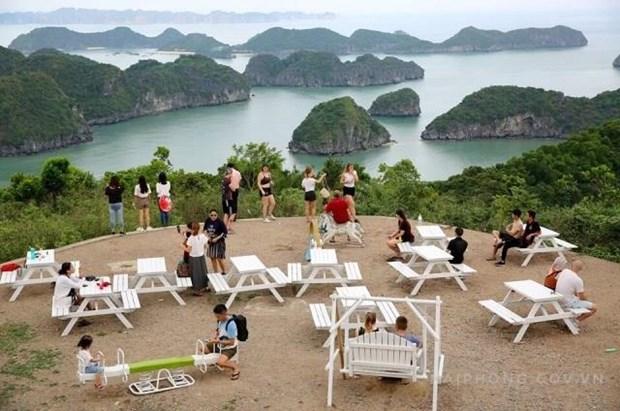 今年前8月海防市接待游客量591万人次 hinh anh 1