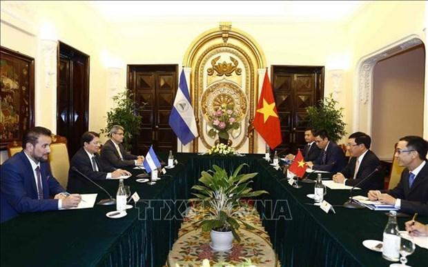 越南政府副总理兼外长范平明与尼加拉瓜外长丹尼斯·孟卡达举行会谈 hinh anh 2