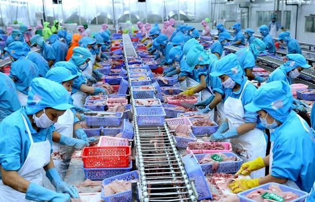 2019年前8月越南水产品出口总额达55.2亿美元 hinh anh 1