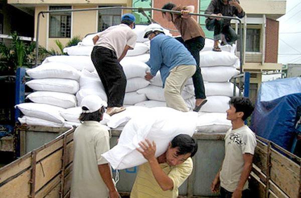 阮春福总理决定发放大米援助灾民 hinh anh 1