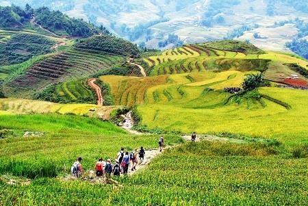 越南体验式旅游潜力巨大 hinh anh 1