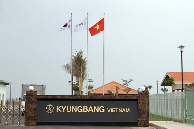 韩国希望实现对越投资结构多样化 hinh anh 1