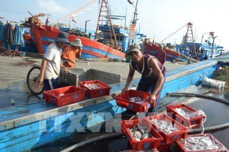 越南积极健全水产资源保护与开发规划 hinh anh 1