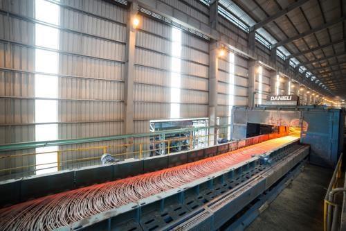 越南和发集团建筑钢材出口量达16.5万吨 hinh anh 1