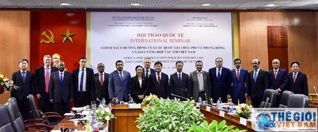 越南与非洲和中东各国进一步促进多方面的合作 hinh anh 1