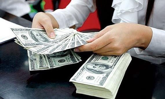 2019年前8月胡志明市侨汇收入达34.5亿美元 hinh anh 1