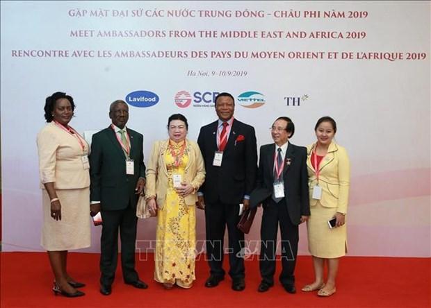 进一步深化越南与中东和非洲地区各国的传统友好合作关系 hinh anh 1