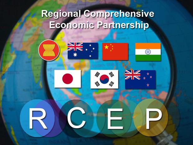 印尼加快多项自由贸易协定谈判进程 hinh anh 1