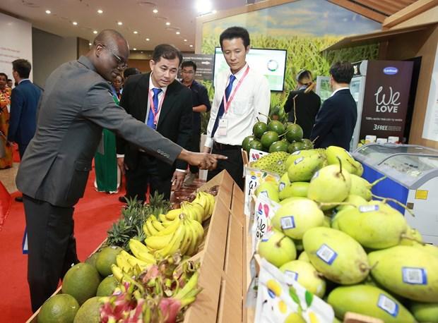 中东和非洲地区——越南企业的潜在市场 hinh anh 1