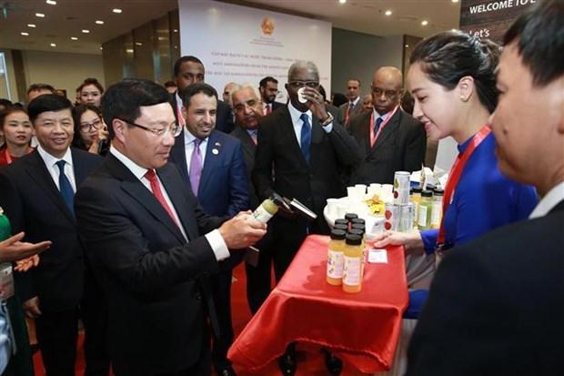 范平明:推动越南与中东和非洲国家关系走向深入 hinh anh 2