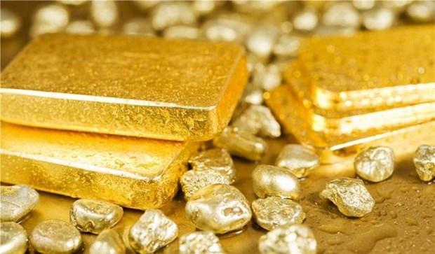 9月10日越南黄金价格下降55万越盾 hinh anh 1