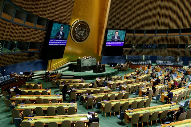 泰国常驻联合国代表:东盟支持一切消除核武器的努力 hinh anh 2