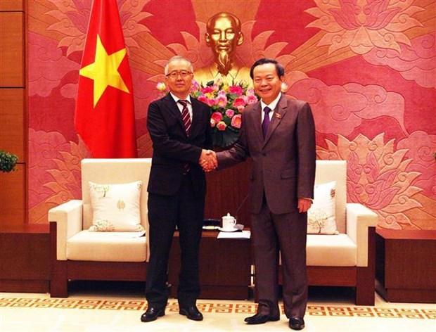 国会副主席冯国显会见JICA高级副总裁 hinh anh 2