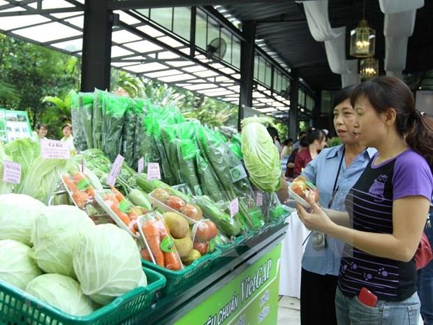 2019年8月份越南蔬果出口额达2.46亿美元 hinh anh 1