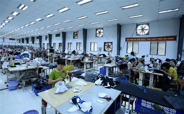 越南纺织服装企业订单数量下滑 hinh anh 1