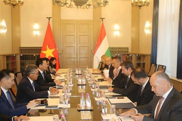 越南与匈牙利加强通信与信息技术领域的合作 hinh anh 1