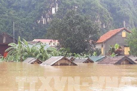 广平省:洪水造成经济损失超过4110亿越盾 hinh anh 1