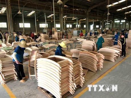 保证林产品原产地高透明度和可追溯性 hinh anh 2