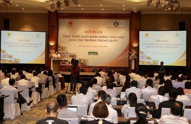 寻找措施来促进越南农水产品对中国市场出口可持续发展 hinh anh 1