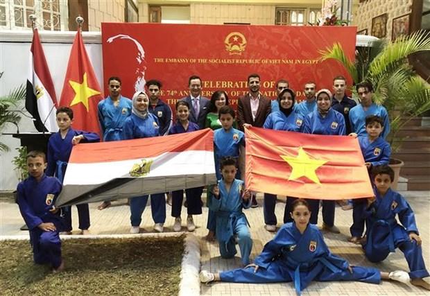 越南国庆74周年纪念典礼在埃及举行 hinh anh 2