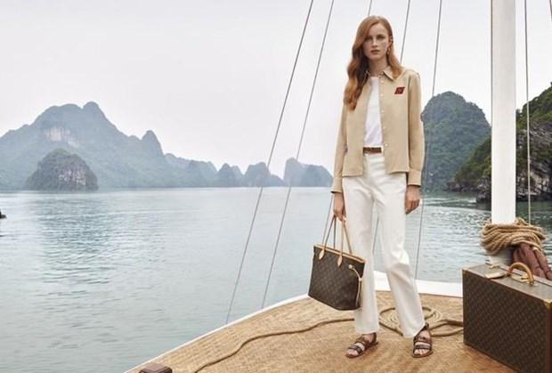 越南多个旅游景点成为路易•威登品牌宣传片中的取景地 hinh anh 2
