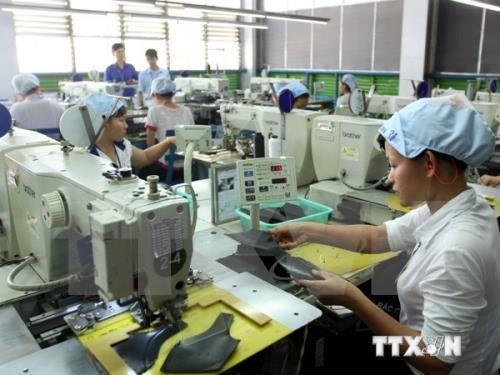 履行社会责任促进企业可持续发展 hinh anh 1
