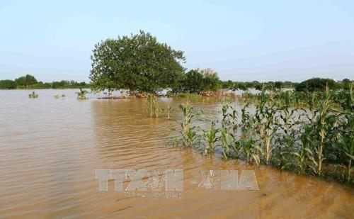 德国协助越南实现水资源的可持续管理 hinh anh 1