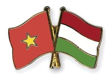 越南—匈牙利友好见面会在河内举行 hinh anh 1