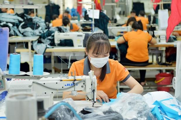 越南是全球10大纺织品服装出口国之一 hinh anh 1
