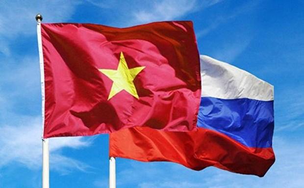俄罗斯扩大与越南的贸易合作 hinh anh 1