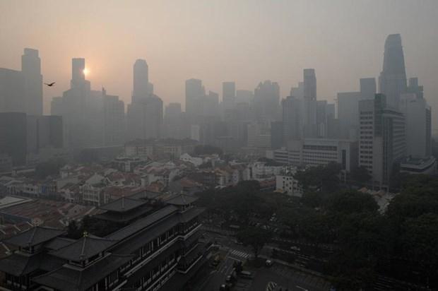 """新加坡空气质量降至""""不健康""""水平 hinh anh 1"""