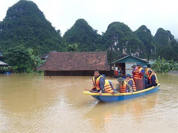 越南应注重有效应对自然灾害 hinh anh 1