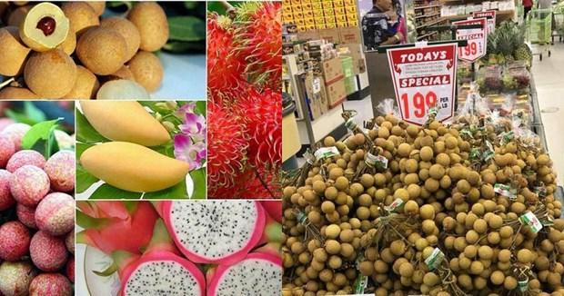 越南成功对外出口6种新鲜水果 hinh anh 1