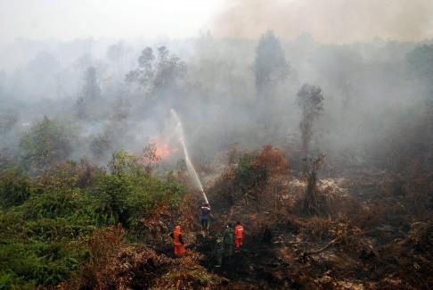 雾霾污染严重影响马来西亚、新加坡等东南亚国家 hinh anh 2