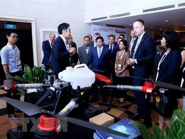 越南努力加大对欧盟市场农产品的出口力度 hinh anh 1