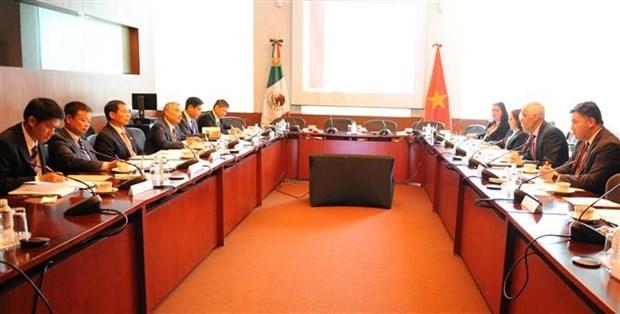 越南与墨西哥第五次政治磋商在墨西哥举行 hinh anh 1