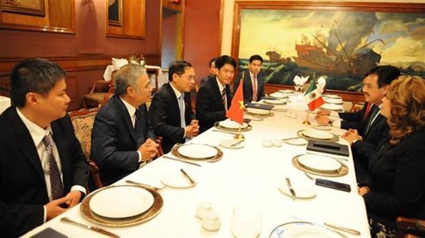 越南与墨西哥第五次政治磋商在墨西哥举行 hinh anh 2