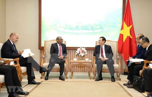 王廷惠副总理:进一步加强越南与南非和尼日利亚之间的关系 hinh anh 1