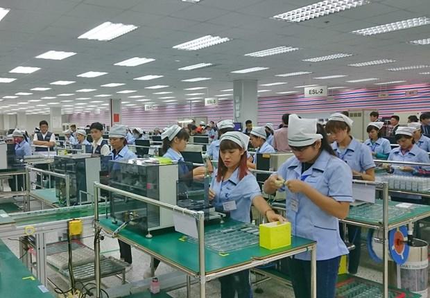 2019年前9月永福省新成立企业同比增长95% hinh anh 1