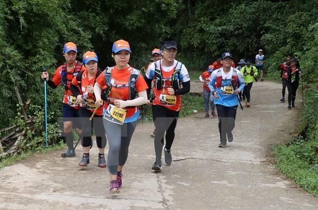 2019年越南山地马拉松比赛吸引国内外4000多名选手参加 hinh anh 2