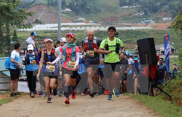 2019年越南山地马拉松比赛吸引国内外4000多名选手参加 hinh anh 1