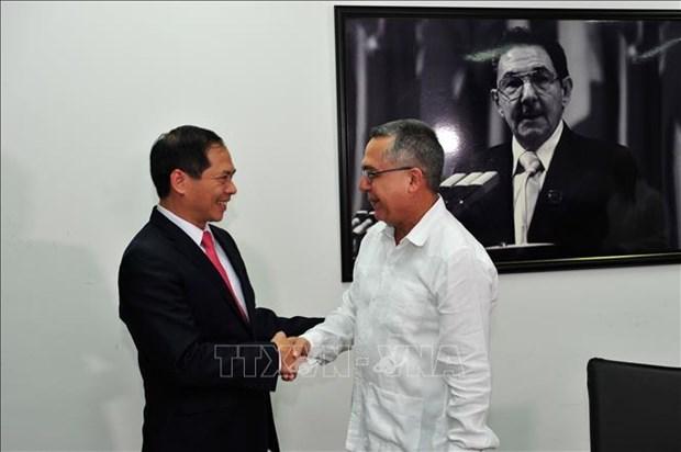 越南和古巴进行政治磋商 hinh anh 1